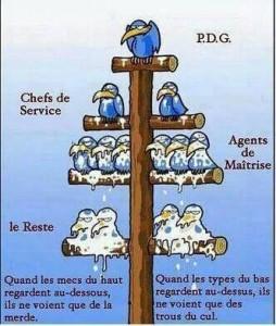 Pyramide des travailleurs